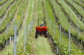 Formation : Initiation à la conduite du tracteur viticole