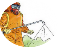 certiphyto_travaux_services